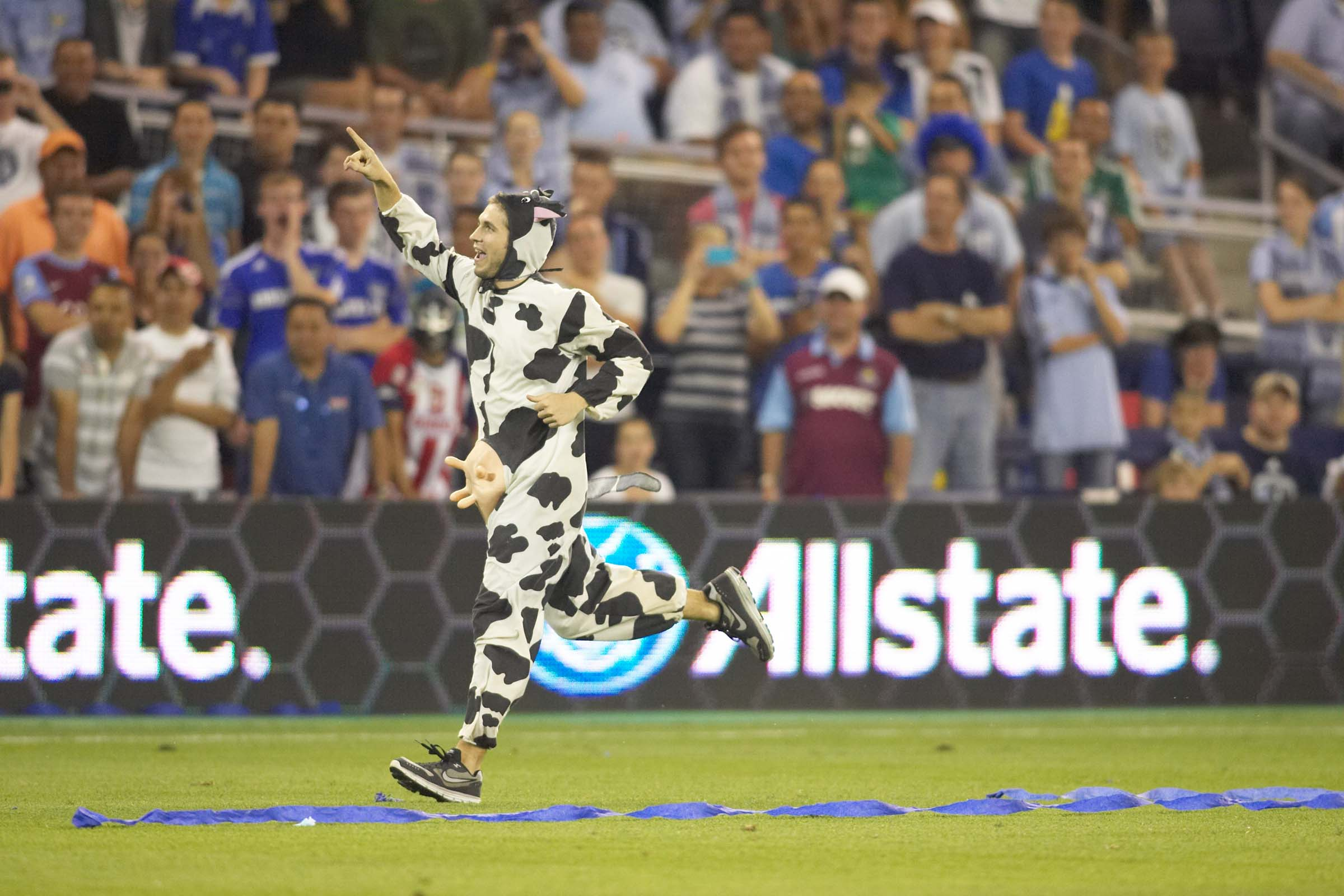 The guy in the cow suit